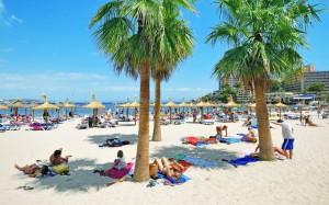 Strand och palmer i Spanien